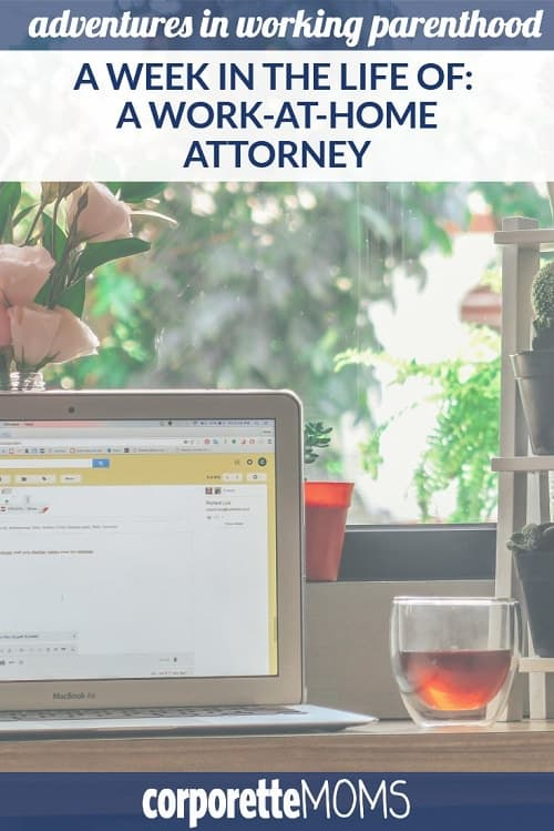 A work-at-home attorney, mom to a teenager, shares her thoughts on work-life balance, working mom guilt, & getting pregnant her 3L year of law school.